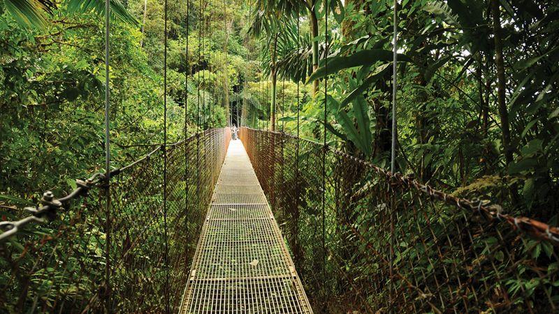 canopy tour in costa rica